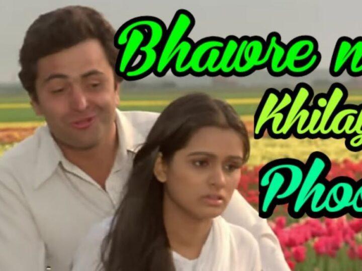Bhanwre Ne Khilaya Phool-Rishi Kapoor Padmini Kolhapuri-Prem Rog-wwwoldisgoldcoin